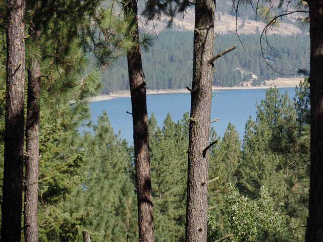 2142 River Rock Way, Kettle Falls, WA 99141 (#202023717) :: Prime Real Estate Group