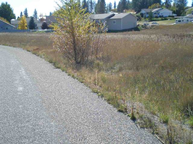 XXXX Pinebrook Dr, Chewelah, WA 99109 (#202023814) :: The Hardie Group