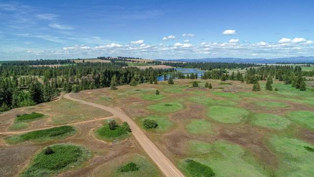 24000XX W Kitt Rd, Reardan, WA 99029 (#202023871) :: The Hardie Group