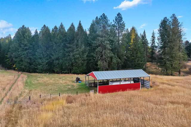 26XXX N Monroe Rd, Deer Park, WA 99006 (#202024057) :: Prime Real Estate Group