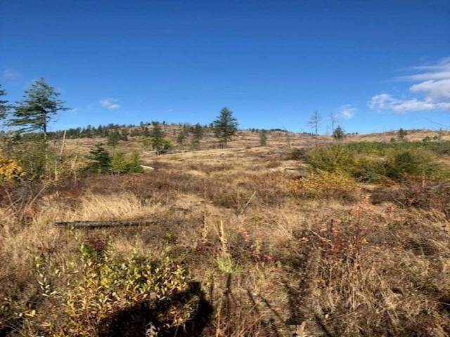 xxx Marble Valley Rd, Colville, WA 99114 (#202024120) :: Five Star Real Estate Group