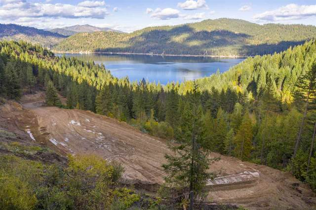 4040 Southwood Shores Rd, Loon Lake, WA 99148 (#202024204) :: Freedom Real Estate Group