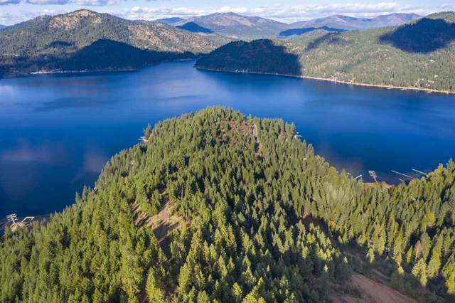 xxx Southwood Shores Rd, Loon Lake, WA 99148 (#202024208) :: Freedom Real Estate Group