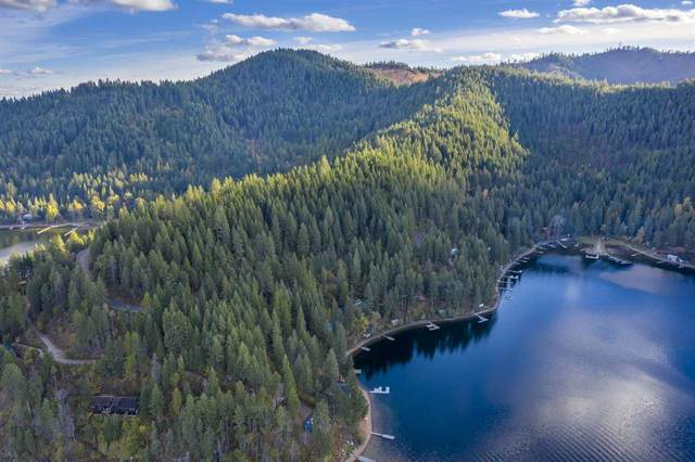 xxxx Southwood Shores Rd, Loon Lake, WA 99148 (#202024211) :: Freedom Real Estate Group