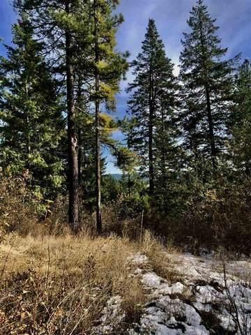 0 N Mt Carlton Rd, Mead, WA 99021 (#202024225) :: Elizabeth Boykin & Keller Williams Realty