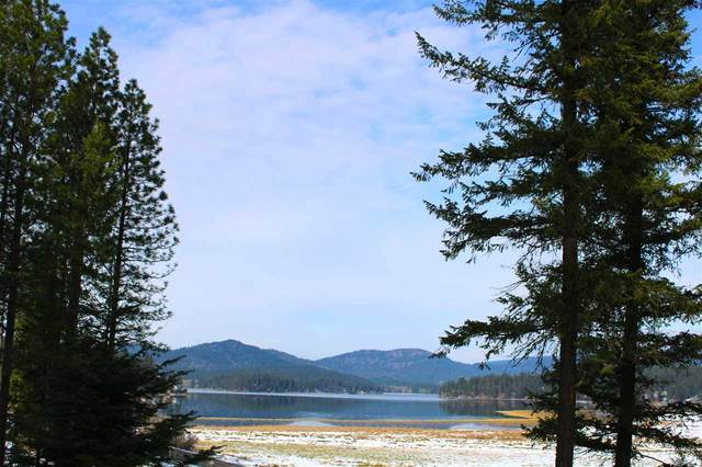 000 W Newman Lake Dr, Newman Lake, WA 99025 (#202024345) :: Prime Real Estate Group