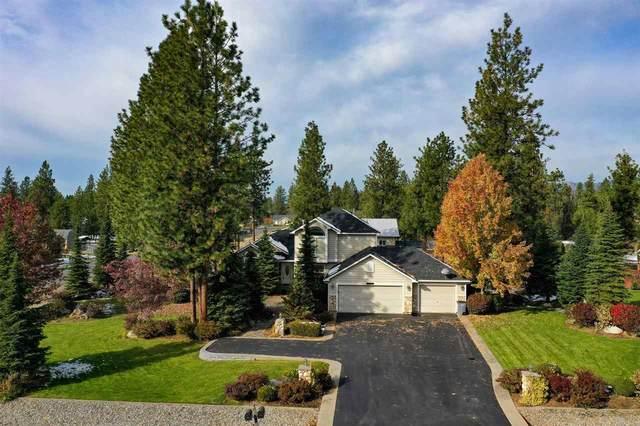 17600 N Sunnyvale Dr, Nine Mile Falls, WA 99026 (#202024362) :: Amazing Home Network