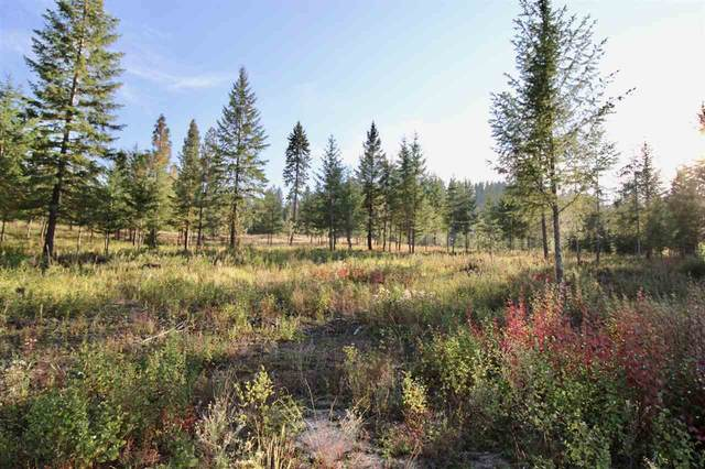 0 Rail Canyon Lot 5 Rd, Ford, WA 99013 (#202024476) :: Amazing Home Network