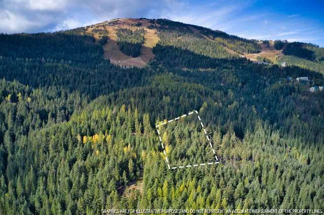LT 8 BLK2 Snowblaze Rec Tracts #58221.0208, Mead, WA 99021 (#202024483) :: Five Star Real Estate Group