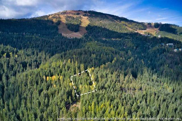 LT 9 BLK 2 Snowblaze Rec Tracts #58221.0209, Mead, WA 99021 (#202024485) :: Freedom Real Estate Group