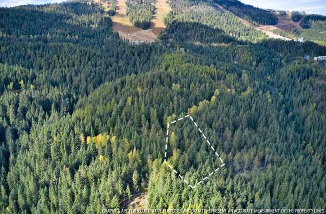 Lt 33 BLK 1 Snowblaze Rec Tracts #58221.0133, Mead, WA 99021 (#202024486) :: Freedom Real Estate Group