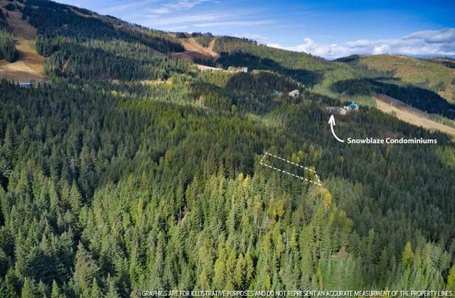 LT 35  BLK 1 Snowblaze Rec Tracts #58221.0135, Mead, WA 99021 (#202024487) :: Freedom Real Estate Group