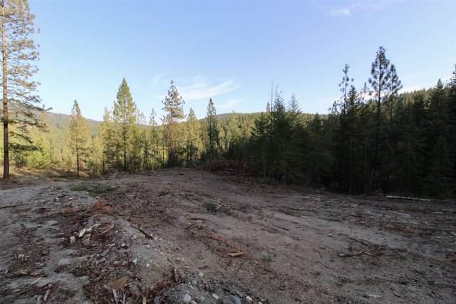 0 Rail Canyon Lot 8 Rd, Ford, WA 99013 (#202024494) :: The Spokane Home Guy Group