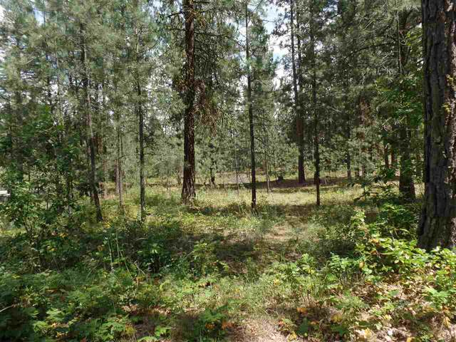 1060 N 395 Hwy, Kettle Falls, WA 99141 (#202024507) :: Parrish Real Estate Group LLC