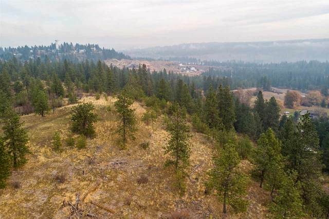 2751 S Scenic Blvd, Spokane, WA 99224 (#202024605) :: Prime Real Estate Group