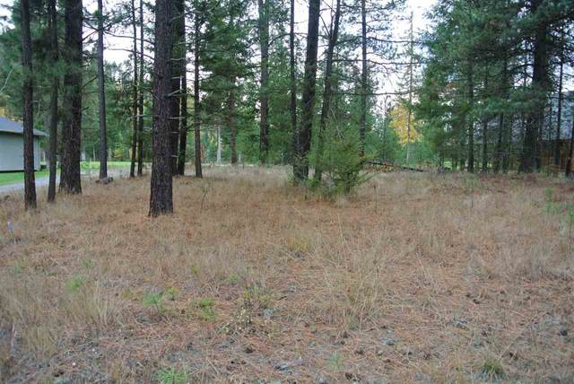 560 Hogans Lot 28 Way, Chewelah, WA 99109 (#202024765) :: The Hardie Group