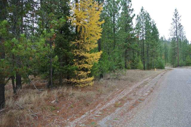 LOT 18 Couples Ct, Chewelah, WA 99109 (#202024769) :: The Hardie Group