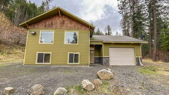 36360 N Mcdowell Canyon Rd, Creston, WA 99117 (#202024814) :: Cudo Home Group