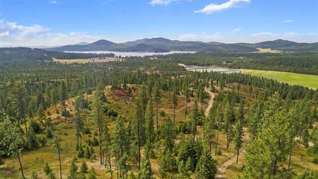 0 E Gardenspot Rd Rd Lot 2, Loon Lake, WA 99148 (#202024962) :: Freedom Real Estate Group