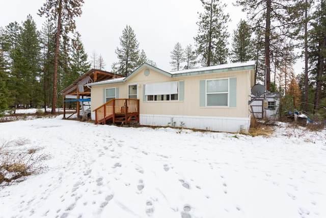 3301 Viewridge Ln, Valley, WA 99181 (#202025296) :: Prime Real Estate Group