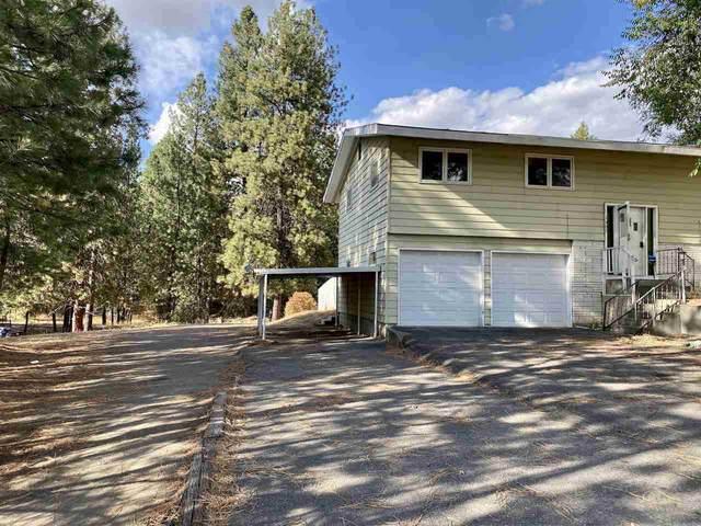 1307 E Hastings Rd, Spokane, WA 99218 (#202025299) :: Amazing Home Network