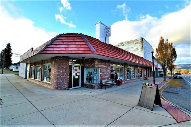 137 Washington Ave, Newport, WA 99156 (#202025307) :: RMG Real Estate Network