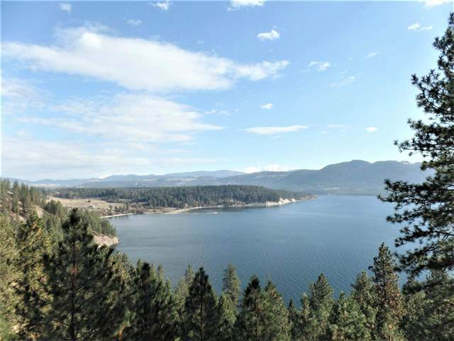 1714 Northport Flat Creek Rd, Kettle Falls, WA 99141 (#202025327) :: The Spokane Home Guy Group