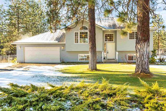 16421 N Wildflower Rd, Nine Mile Falls, WA 99026 (#202025384) :: RMG Real Estate Network