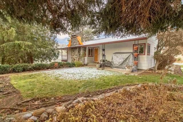 6633 Long Lake Dr, Nine Mile Falls, WA 99026 (#202025399) :: RMG Real Estate Network