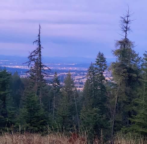 NNA S Corkery Rd, Spokane, WA 99223 (#202025696) :: The Synergy Group