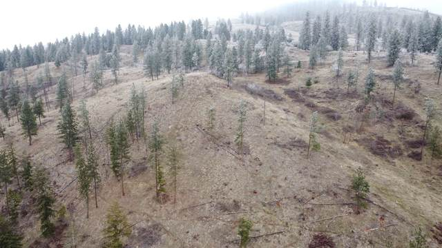 NKA Marble Valley Basin Rd, Addy, WA 99101 (#202026047) :: Prime Real Estate Group