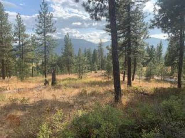 LOT 23 Palmer Loop, Chewelah, WA 99109 (#202110392) :: Parrish Real Estate Group LLC