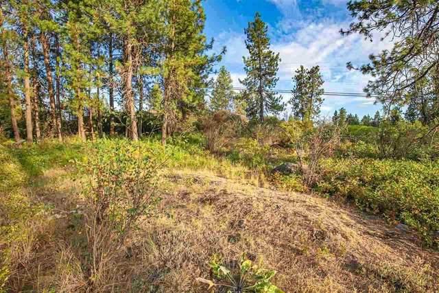 3884 W Grandview Ave, Spokane, WA 99224 (#202110431) :: Prime Real Estate Group