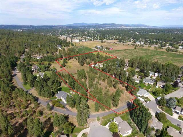 3310 S Ridgeview Dr, Spokane Valley, WA 99206 (#202110573) :: Top Agent Team