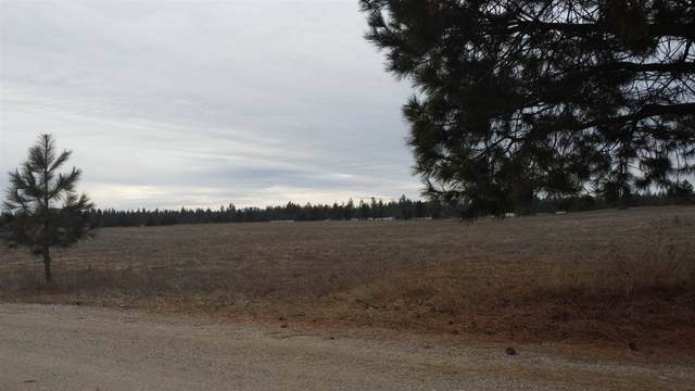 XXX55 N Deer Haven Ln, Deer Park, WA 99006 (#202110583) :: Parrish Real Estate Group LLC