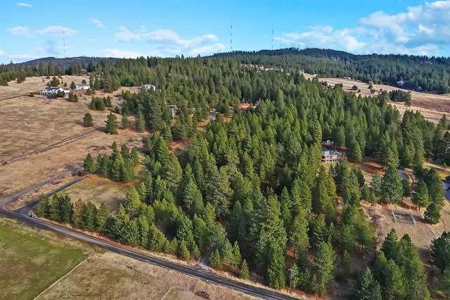 XX S Harmon Rd, Spokane, WA 99223 (#202110605) :: Prime Real Estate Group