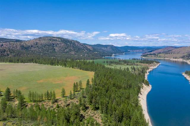 39397 Sand Flats, Davenport, WA 99122 (#202110653) :: The Spokane Home Guy Group