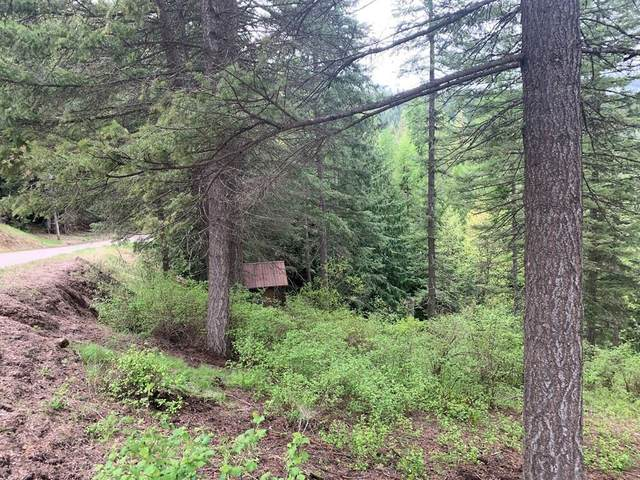 4079 Southwood Shores Rd, Loon Lake, WA 99148 (#202110720) :: The Hardie Group