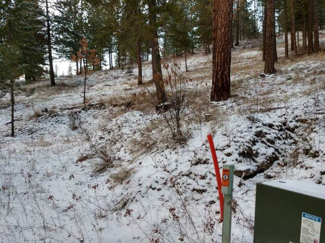 Lot 18 W Canyon Springs Way, Loon Lake, WA 99148 (#202110853) :: The Spokane Home Guy Group