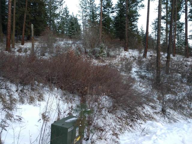 Lot 25 W Canyon Springs Way, Loon Lake, WA 99148 (#202110863) :: Parrish Real Estate Group LLC