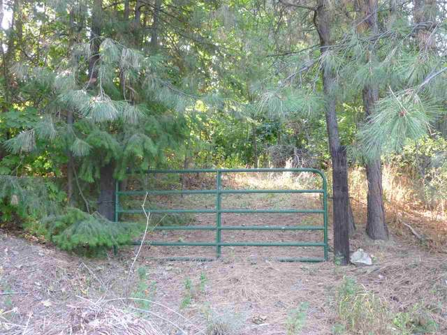 3271 E Williamson Ct (13Th+ Thor/ Be, Spokane, WA 99202 (#202110969) :: Northwest Professional Real Estate