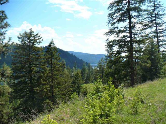 4139 N Deer Lake Rd Lot 6, Loon Lake, WA 99148 (#202110982) :: Freedom Real Estate Group