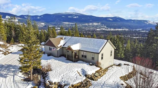 824 Smackout Pass Rd, Ione, WA 99139 (#202111301) :: Top Agent Team
