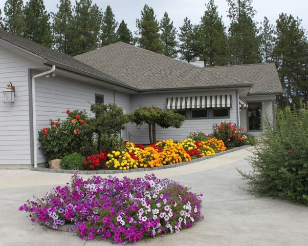 36 Windy Ridge Ln, Kettle Falls, WA 99141 (#202111556) :: Parrish Real Estate Group LLC
