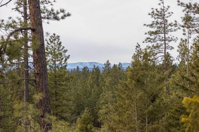 130XX E Nelson Rd, Elk, WA 99009 (#202111561) :: The Spokane Home Guy Group