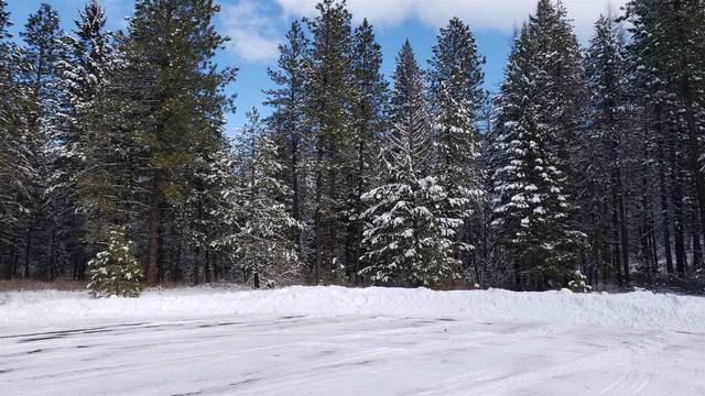 4206 E Fantasy Ct #11, Loon Lake, WA 99148 (#202111758) :: The Spokane Home Guy Group