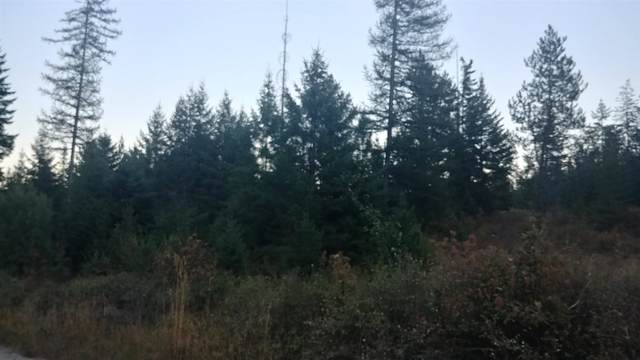 xxx Lakeview Rd, Otis Orchards, WA 99027 (#202111772) :: Elizabeth Boykin & Jason Mitchell Real Estate WA