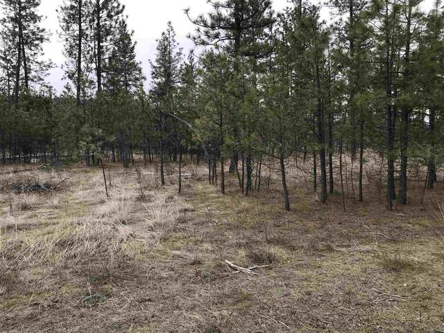 TBD Highway 291 Hwy, Tumtum, WA 99034 (#202111834) :: Parrish Real Estate Group LLC