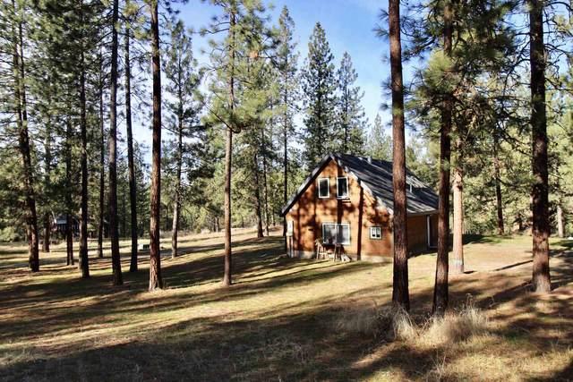 20002 N Mathias Ln, Nine Mile Falls, WA 99026 (#202111856) :: Cudo Home Group
