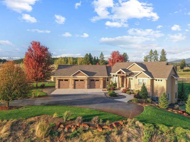 13308 N Peone Rd, Mead, WA 99021 (#202111893) :: Cudo Home Group